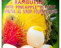 Aroy-D Rambutan & Pineapple in Syrup 565gr